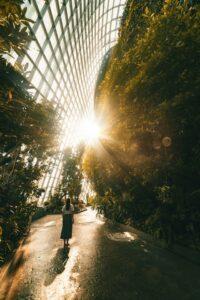 Ogrody Giardini della Biennale